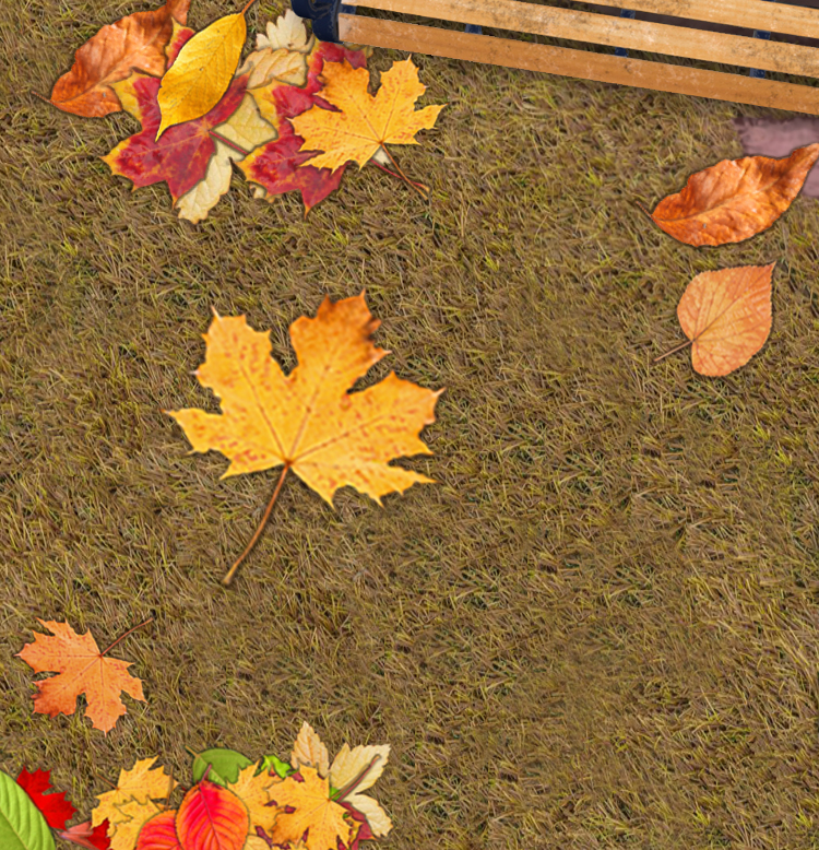 Autumn Leaves game cover image